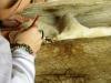restauro-pittorico-e-ligneo-68