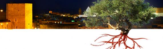 Bari International Conference 2014